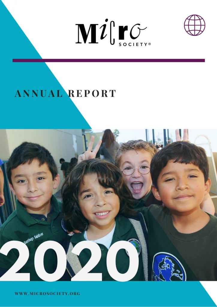 MSI 2020 Annual Report Cover